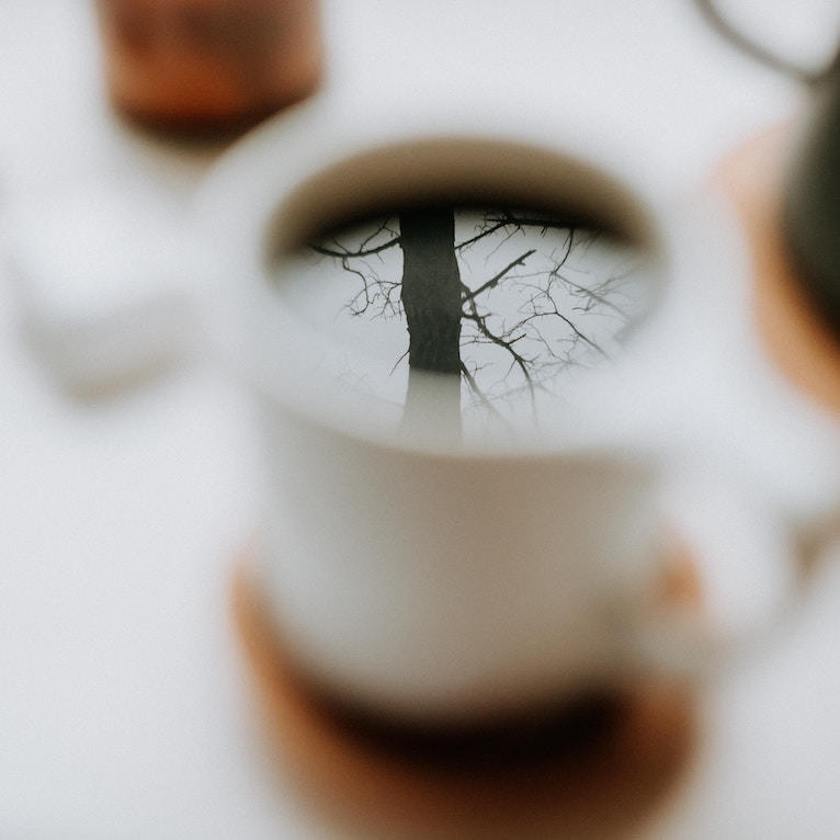leafless tree reflected in black coffee in a white mug