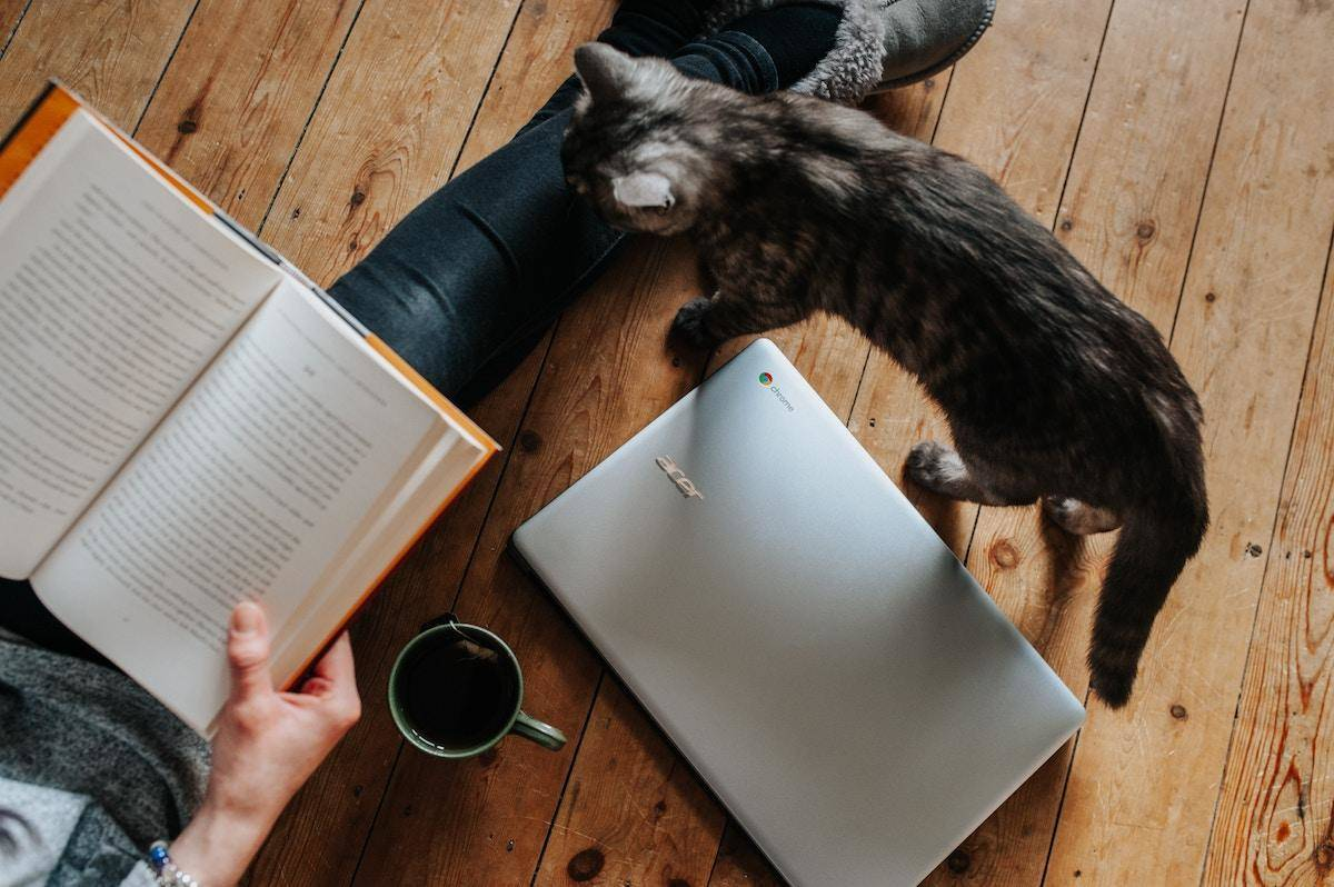 A woman sitting on the floor with coffee and books while a kitten stands next to her